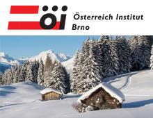 SEO správa pro Österreich Institut Brno